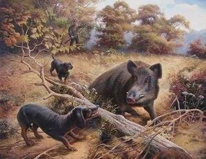 История породы такса, происхождение, возникновение, формирование породы