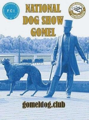 Республиканские выставки собак в Гомеле - WikiPet