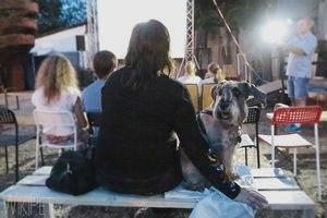 Фооотчет с первого в Минске dog-friendly кинопоказа